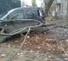 У Сєвєродонецьку в наслідок ДТП постраждав пішохід