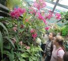 Сєвєродонецький міський Центр еколого-натуралістичної творчості учнівської молоді