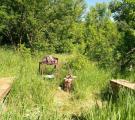 «Баня на дровах в Александровке»