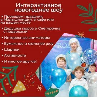 Новогодние поздравления и интерактивное шоу! Домашние поздравления с Дедом Морозом от Малышляндии!