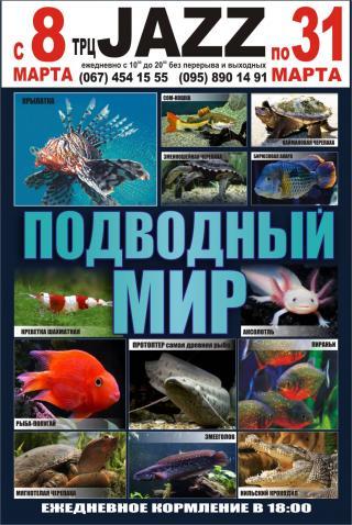 Выставка экзотических рыб «Подводный мир».