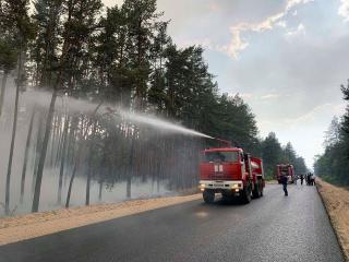 Оперативна інформація щодо загорання сухої трави та лісового масиву