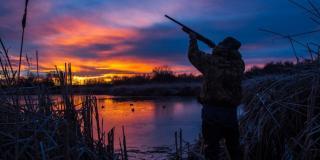 Мисливський сезон на Луганщині розпочато