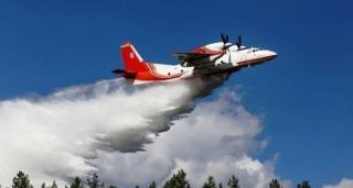 Авиация приступила к тушению масштабных лесных пожаров