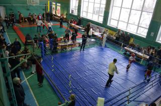 Впервые за пять неспокойных лет на Луганщине возобновились областные чемпионаты по кикбоксингу