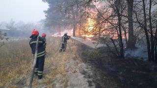 Слідство розглядає чотири основні версії виникнення масштабних пожеж на Луганщині