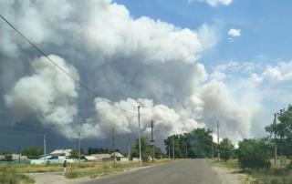 Пожар под Северодонецком достиг населенных пунктов. Идет эвакуация людей