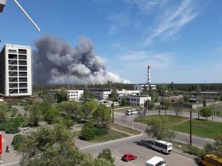 Огонь охватил около 5 гектаров леса под Северодонецком