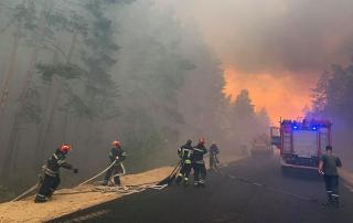 Разминировал боеприпасы и сжег 10 га леса в Луганской области