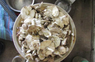 В Лисичанске мужчина умер от отравления грибами