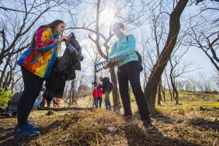 Приглашаются добровольцы для уборки лесного массива у Чистого озера
