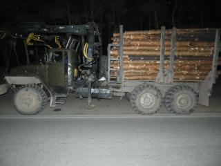 Протягом доби поліцейські Луганщини виявили 10 фактів перевезення лісу