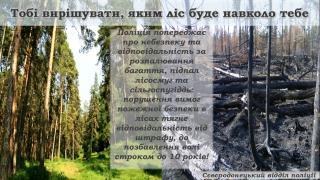 Поліція м. Сєвєродонецька попереджає про небезпеку та відповідальність за спричинення пожеж у лісосмугах