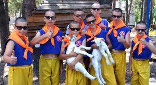 Лагерь боевых искусств «Тигрёнок»: гордимся прожитым летом!