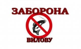 Увага! Заборона щодо вилову риби у водоймі «Озеро Паркове»