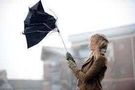 Правила поведінки при сильному вітрі